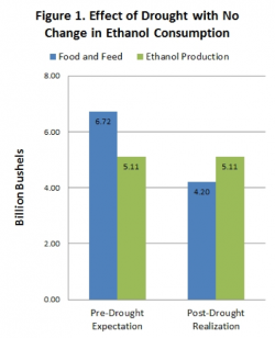 Ethanol Waivers: needed or Irrelevant? | Effect of Draught With No Change In Ethanol Consumption