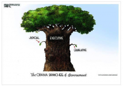 The Obama Branches of Government